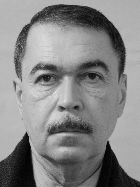 Vladimir Yermolenko